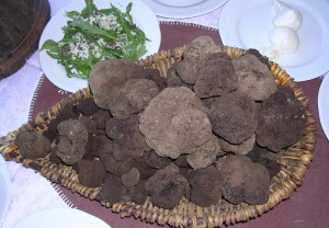Il tartufo nero di Bagnoli Irpino